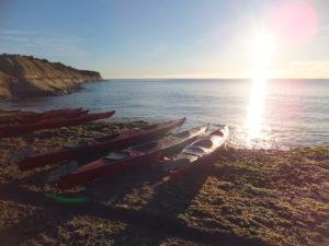 Le kayak, un formidable moyen de vous fondre parmi elles